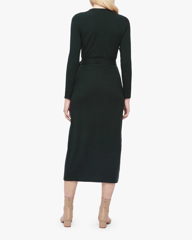 Diane von Furstenberg Astrid Dress 2