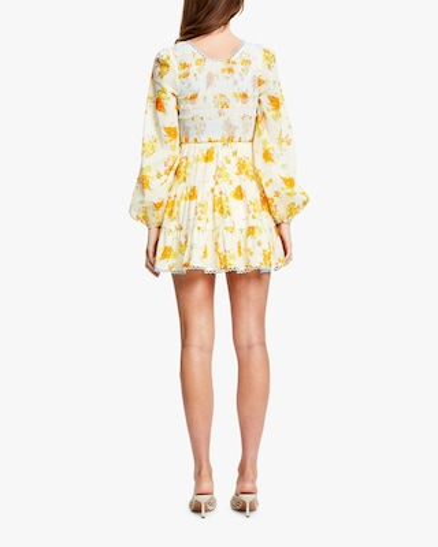 Alice McCall Cinnamon Girl Mini Dress 2