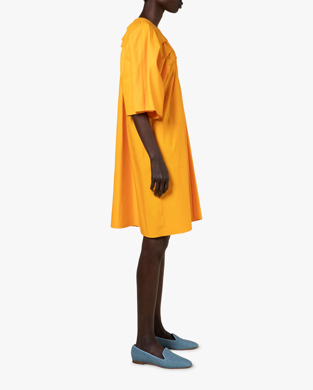 Roksanda Usui Dress 1