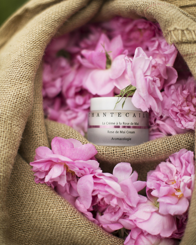 Chantecaille La Crème à la Rose de Mai 50ml 3