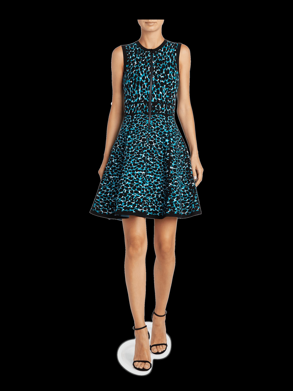 Paneled Full Skirt Dress