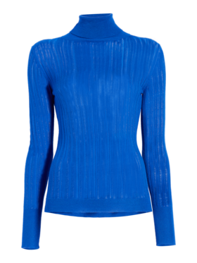 Long Sleeved Turtleneck Top